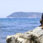 Montenegrin Mountain Hound cute