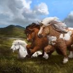 Shetland Pony image