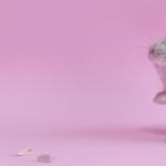 Mouse hd wallpaper