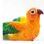 Sun Conure wallpapers for desktop